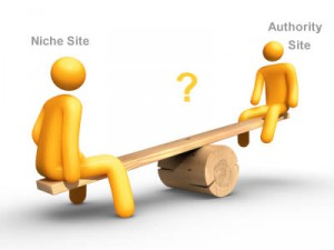 authority or niche website